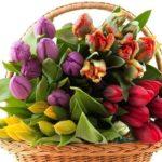 Что подарить любимой на 8 марта?