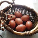 Как покрасить пасхальные яйца кофе?