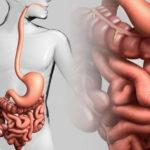 Медовые и кофейные клизмы для очищения кишечника