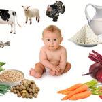 Молоко, мясо и рыба для малыша