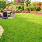 Какой газон лучше выбрать для своего участка?